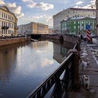 Набережная реки Мойки :: Татьяна Тарасова
