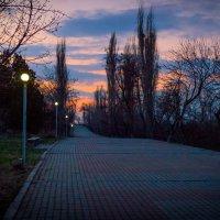 Сумерки в парке :: Ashot Turajyan
