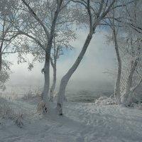 Рождественский мороз :: Виктор Малород