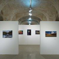 выставка :: Евгений K
