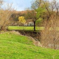 Весна в деревне. :: Елена Васильева