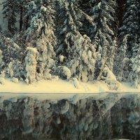 отражение... :: Александр