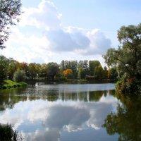 Пруд и ранняя осень :: Владимир Гилясев