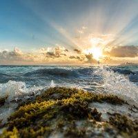 Карибское море. Мексика :: Александр Кошалко