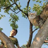 Два взгляда на одном дереве. :: Елена Ковшова