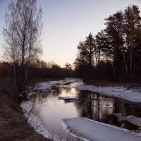 За лесом рассвет :: Светлана Шмелева