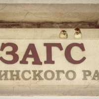 Воробей терпелив :: Андрей Поляков