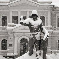 Стойкий солдатик :: Сергей Тарабара