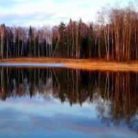 отражение 2 :: Юлия Шуралева