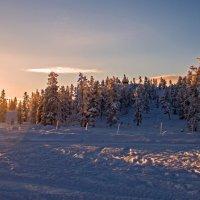 Зимний рассвет... :: Оленька Соломатова
