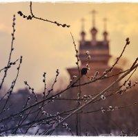 Как наверху - так и внизу.. Любовь и свет, мир и единство.. :: Ирина Данилова