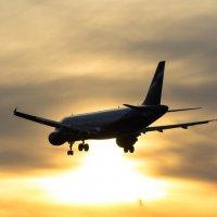 Airbus A320 - Aeroflot :: Денис Атрушкевич