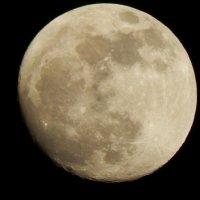 Луна :: Елена Чупрова