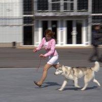 Дама с собачкой :: Елена Жукова
