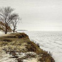Втроём на берегу... :: Андрей И.