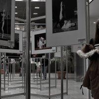 фотовыставка в Крокус Сити :: Дмитрий Бубер