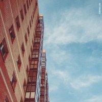 Выше в небо. :: Кенгуру Урбанистический