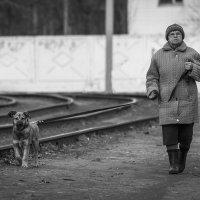 Бабушка с собакой :: Василий Либко