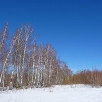 Небо и последний снег :: Артем Калашников
