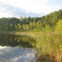 Круглое озеро :: Александра Петрухина