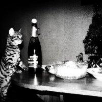 С Новым  Годом!!! :: Наталья