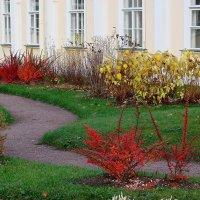 Ораниенба́ум. Цветы  у дворца :: Владимир Гилясев