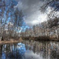 Весна :: Nikita Volkov