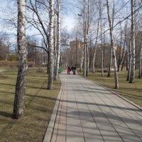 Дорожка в парке. Весна. :: Мила