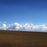 Возделанное поле :: Валерий Талашов