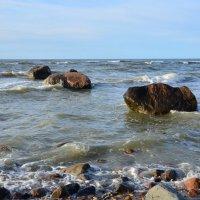Морские камушки :: Александр