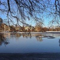 Весна :: Людмила Алексеева