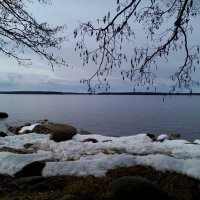 Весна.Залив. :: Наталья Левина