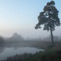 Утро туманное :: Олег Козлов