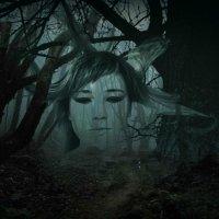 Темный лес :: Нюра Жадан