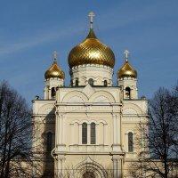 С Праздником Светлой Пасхи! :: Владимир Гилясев