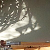 рисующий тенью... :: Михаил Николаев