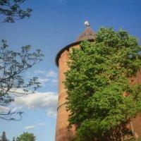 У башни :: Микто (Mikto) Михаил Носков