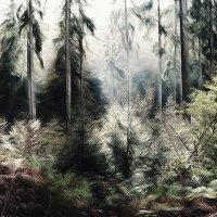 В тёмно-синем лесу, Где трепещут осины :: Лара Leila
