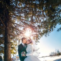 Февральская свадьба :: Николай Гагаринов