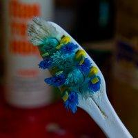 Зубная щётка. :: Яков Реймер