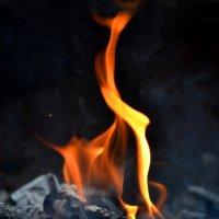 Огонь :: Виктория Гавриленко
