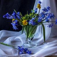Апрельские первоцветы. :: Ирина Чикида
