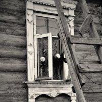 Последняя ступень... :: Виталий Виницкий