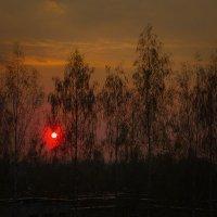 Солнышко садится... :: Виктор Грузнов