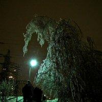 после ледяного дождя :: Анна Маркина
