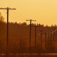 Оранжевое электричество :: Василий Либко