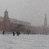 Снежный день :: Валерий Антипов