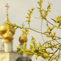 Весна :: юрий Амосов