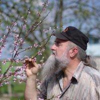 Ах весна.....! :: Aleksandr Kondratenko
