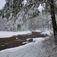 Зима в апреле :: vladimir